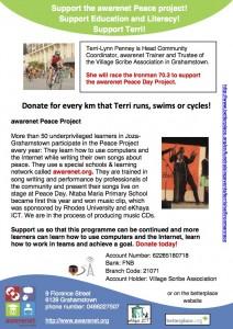 awarenet_Ironman_flyer
